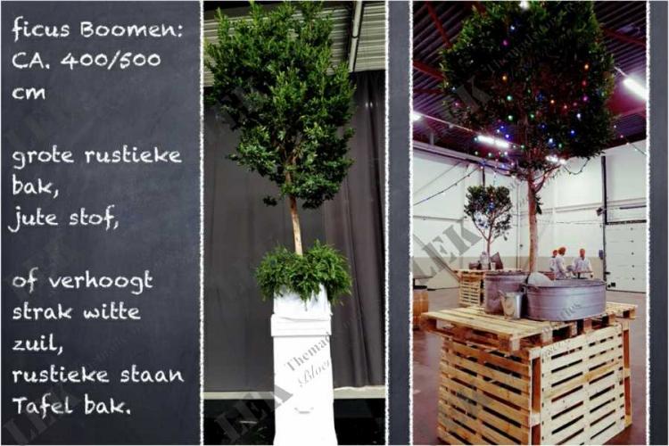 Themadecoraties huren voor uw evenement via lek bloemenservice